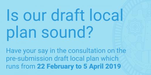 Draft local plan 2019